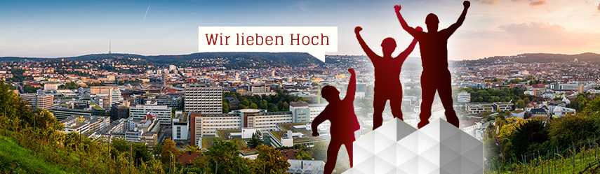 Gerüst vor Stuttgart Panorama